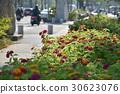 스트리트 뷰, 도시, 교통, 인도 30623076