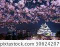osaka castle, nishinomaru park, osaka 30624207