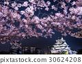 osaka castle, nishinomaru park, osaka 30624208