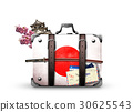 Japan, retro suitcase with a Japanese flag 30625543