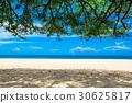 sea, beach, summer 30625817
