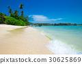 beach, sea, tropical 30625869