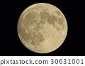 달, 위성, 보름달 30631001