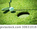Golf club and ball in grass 30631016