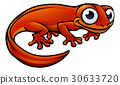 Newt or Salamander Cartoon Character 30633720