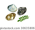 Assami watercolor illustration 30635806
