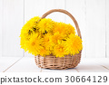 basket, blossom, flower 30664129