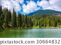 mountain lake Synevir among the forest 30664832