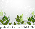 Background with tea plants 30664892