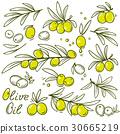 olive, branch, olives 30665219