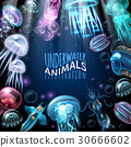 Underwater Animals Frame Background 30666602