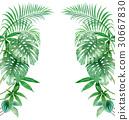 관엽 식물 세로 국경 세트 30667830