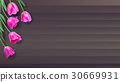 Realistic vector colorful pink tulips set on 30669931