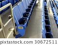 歡呼 東京巨蛋體育館 觀眾 30672511