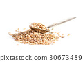sesame seeds isolated on white background 30673489