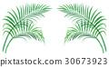 관엽 식물 30673923