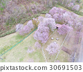 drone, aerial, aerial photography 30691503