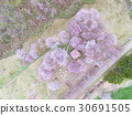 drone, aerial, aerial photography 30691505