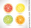 lime, lemon, orange, grapefruit slices 30692689