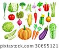 蔬菜 食物 食品 30695121