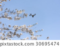 drone, rc, radio controlled models 30695474
