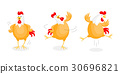Set of happy chicken dancing.  30696821