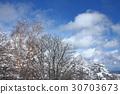 ปีนเขา,โตเกียว,ฤดูหนาว 30703673
