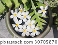 White Flowers Group On Water Bowl 30705870