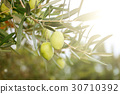 Greek ripe olives 30710392