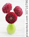 Bouquet of dahlias 30710796