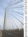 Pylon bridge over Ada, Belgrade - Serbia 30730792