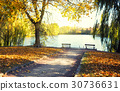 Lake in the park with benches 30736631