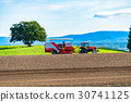 bieicho, field, farming 30741125