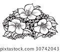 drawing flowers illustration. 30742043