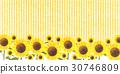 sunflower, sunflowers, bloom 30746809