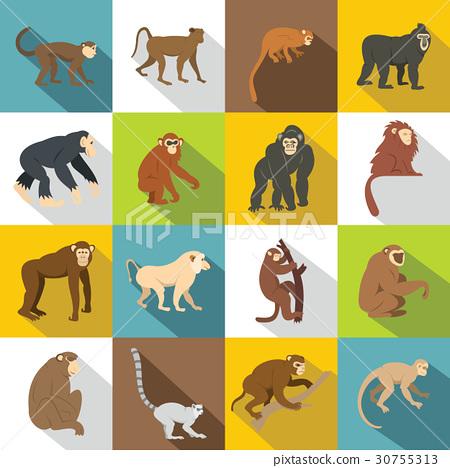 Monkey types icons set, flat style 30755313