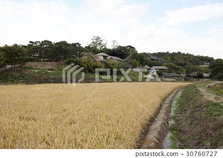 Yangdong Folk Village, Gyeongju City, Gyeongbuk Province 30760727
