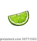 石灰 酸橙 萊姆 30771563