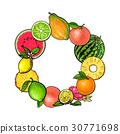 水果 熱帶 圓的 30771698
