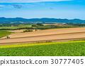 비에이, 언덕, 농업 30777405