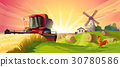 landscape, vector, rural 30780586