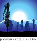 Tree silhouette, landscape 30791347