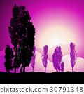Tree silhouette, landscape 30791348