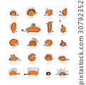 hedgehog, vector, design 30792352