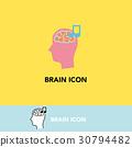 brain, the, icon 30794482