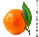 One tangerine or orange with leaves isolated on 30799058