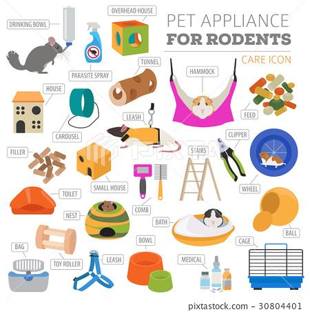 Pet rodents appliance icon set flat  30804401