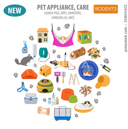 Pet rodents appliance icon set flat  30804402