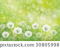 Vector  nature  background. 30805998