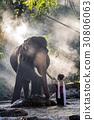Pretty thai girl touching elephant's ivory 30806063